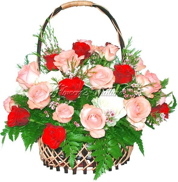 http://www.flowers2thailand.com/sources/flv071a1.jpg